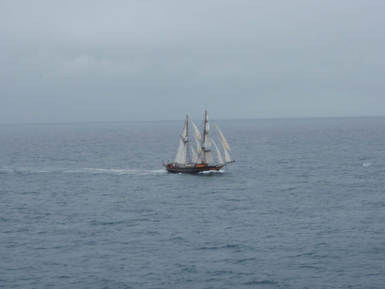 she sails fast